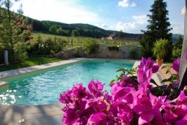Gartenpool im Sommer